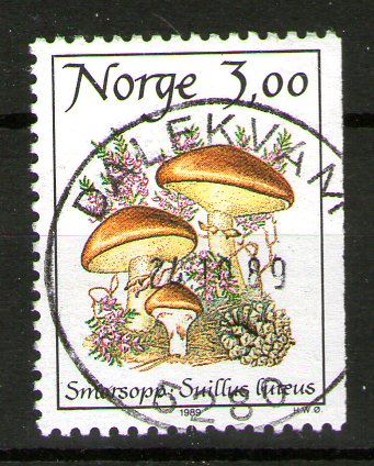 https://www.norstamps.com/content/images/stamps/137000/137654.jpg