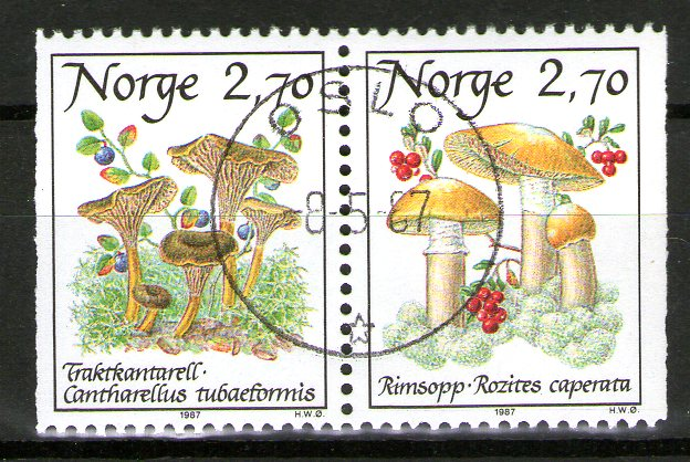 http://www.norstamps.com/content/images/stamps/138000/138774.jpg