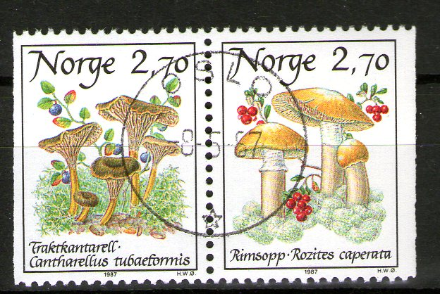 http://www.norstamps.com/content/images/stamps/138000/138775.jpg