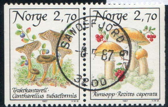 http://www.norstamps.com/content/images/stamps/154000/154775.jpg