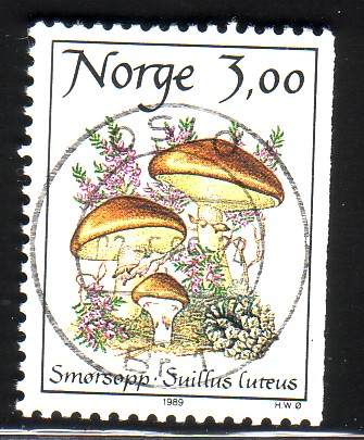 http://www.norstamps.com/content/images/stamps/49000/49173.jpg