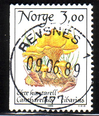 http://www.norstamps.com/content/images/stamps/49000/49260.jpg