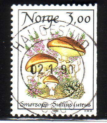 http://www.norstamps.com/content/images/stamps/49000/49266.jpg