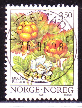 http://www.norstamps.com/content/images/stamps/49000/49412.jpg