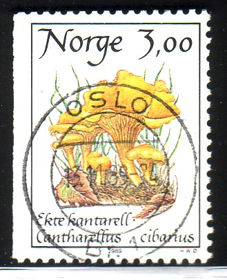 http://www.norstamps.com/content/images/stamps/49000/49860.jpg