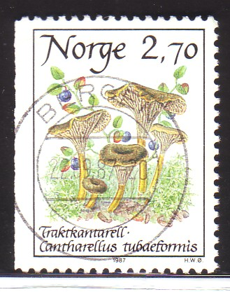 http://www.norstamps.com/content/images/stamps/49000/49918.jpg