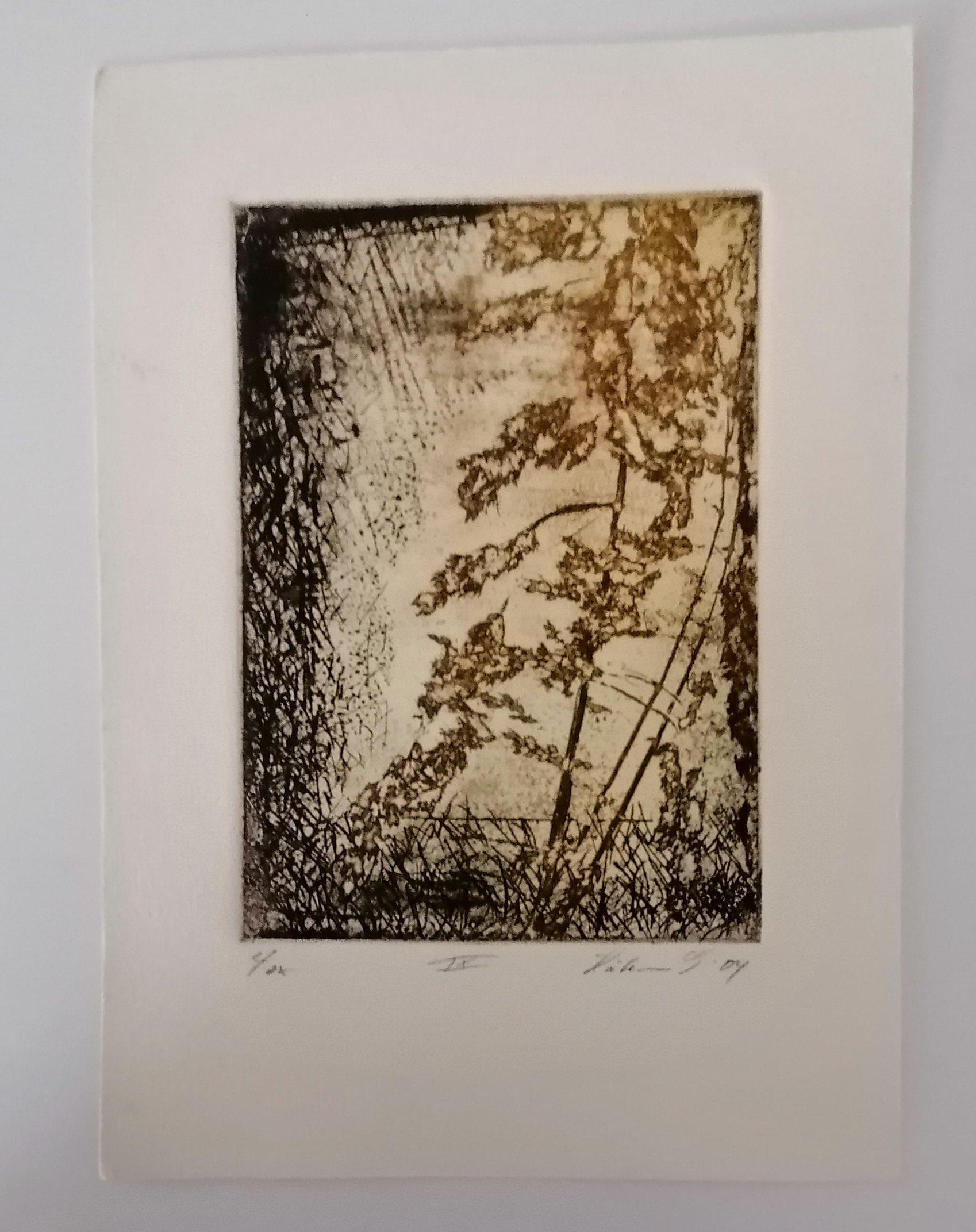 https://www.norstamps.com/content/images/stamps/gtgallerier/191.jpg